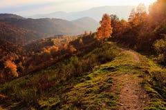 δρόμος φθινοπώρου στοκ φωτογραφία