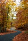 Δρόμος φθινοπώρου Curvy Στοκ εικόνες με δικαίωμα ελεύθερης χρήσης