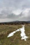 Δρόμος χιονιού στο ομιχλώδες βουνό με το δραματικό γκρίζο ουρανό Ρωσία, Stary Krym Στοκ φωτογραφία με δικαίωμα ελεύθερης χρήσης