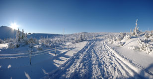 δρόμος χιονώδης Στοκ Φωτογραφίες