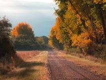 Δρόμος Cottonwood φθινοπώρου στοκ φωτογραφία