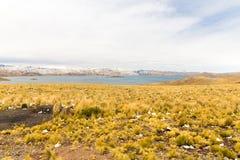 Δρόμος Cusco- Puno, λίμνη Titicaca, Περού, Νότια Αμερική. Ιερή κοιλάδα του Incas. Θεαματική φύση των χιονωδών βουνών Στοκ Εικόνα