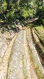 Δρόμος Etruscan Rutted στη νεκρόπολη Banditaccia Στοκ Εικόνα