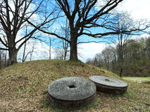 Δρύινα δέντρα και millstones, Λιθουανία Στοκ Εικόνες