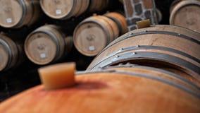 Δρύινα βαρέλια στον υπόγειο θάλαμο κρασιού απόθεμα βίντεο