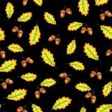 Δρύινα φύλλα και καρύδια απεικόνιση αποθεμάτων