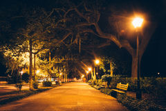 Δρύινες δέντρα και πορεία τη νύχτα στο πάρκο Forsyth, σαβάνα, Γεωργία Στοκ Εικόνες