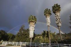 Δρύινη άποψη, Καλιφόρνια, ΗΠΑ, την 1η Μαρτίου 2015, πλήρες ουράνιο τόξο πέρα από τη θύελλα βροχής στην κοιλάδα Ojai, 3 φοίνικες Στοκ Φωτογραφίες