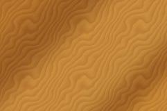 δρύινο δάσος σιταριού Στοκ Φωτογραφία