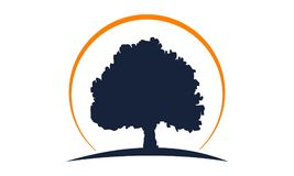 Δρύινο πρότυπο δέντρων απεικόνιση αποθεμάτων