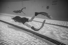Δυναμικός με την απόδοση πτερυγίων (DYN) από υποβρύχιο στοκ φωτογραφίες