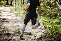 Δυναμικός τρέχοντας μαραθώνιος αθλητών στα ξύλα στοκ φωτογραφία