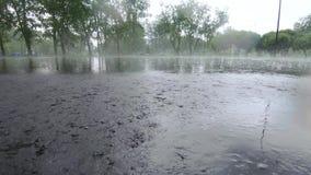 Δυνατή βροχή στο πάρκο πόλεων φιλμ μικρού μήκους
