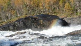 Δυνατός καταρράκτης ποταμών βρυχηθμού με το ζωηρόχρωμο δασικό υπόβαθρο φιλμ μικρού μήκους