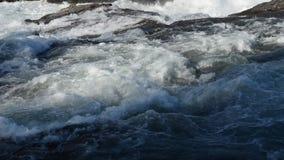 Δυνατός καταρράκτης ποταμών βρυχηθμού απόθεμα βίντεο