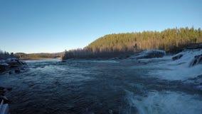 Δυνατός παγωμένος καταρράκτης στα τέλη του φθινοπώρου με το δάσος απόθεμα βίντεο