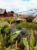 δυτικές άγρια περιοχές στοκ φωτογραφία με δικαίωμα ελεύθερης χρήσης