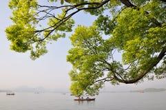 Δυτική λίμνη, Hangzhou, Κίνα στοκ φωτογραφία με δικαίωμα ελεύθερης χρήσης