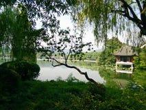 Δυτική λίμνη Hangzhou Στοκ Εικόνα