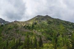 Δυτική Σιβηρία, βουνά Chuya Altai στοκ εικόνα με δικαίωμα ελεύθερης χρήσης