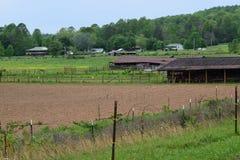 Δυτικό αγρόκτημα βουνών NC στοκ φωτογραφίες