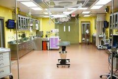 Δωμάτιο λειτουργίας σε ένα νοσοκομείο για τα ζώα Κτηνιατρική κλινική για τα κατοικίδια ζώα και άλλο ζώο Στοκ Εικόνες