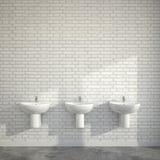 Δωμάτιο WC με τις λεκάνες πλυσίματος στον τοίχο των τούβλων Στοκ εικόνες με δικαίωμα ελεύθερης χρήσης