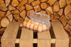 Δωδεκάδα από τα καφετιά αυγά Στοκ Εικόνες