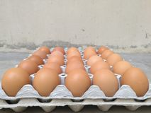 Δωδεκάδα από το αυγό κοτόπουλου για το μαγείρεμα του προγεύματος στο δίσκο αποθήκευσης αυγών με το υπόβαθρο θαμπάδων, αυγό Πάσχας Στοκ εικόνα με δικαίωμα ελεύθερης χρήσης