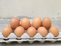 Δωδεκάδα από το αυγό κοτόπουλου για το μαγείρεμα του προγεύματος στο δίσκο αποθήκευσης αυγών, σειρά 2 του αυγού, αυγό Πάσχας για  Στοκ Φωτογραφίες