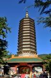 δόντι stupa Στοκ Φωτογραφίες