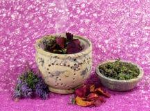 Δύναμη λουλουδιών aromatherapy Στοκ εικόνα με δικαίωμα ελεύθερης χρήσης