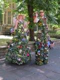 Δύναμη Υόρκη λουλουδιών στοκ φωτογραφία με δικαίωμα ελεύθερης χρήσης