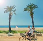 Δύο άνθρωποι που οδηγούν τα ποδήλατα κατά μήκος της παραλίας με τους φοίνικες Στοκ Φωτογραφίες