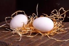 Δύο άσπρα αυγά κοτόπουλου Στοκ Φωτογραφία