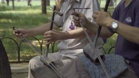 Δύο άτομα που παίζουν τα κινέζικα δύο τα βιολιά απόθεμα βίντεο