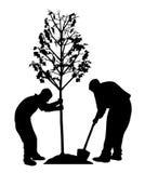Δύο άτομα που φυτεύουν ένα δέντρο ελεύθερη απεικόνιση δικαιώματος