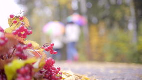 Δύο έφηβοι που περπατούν με τις ομπρέλες πέρα από το πάρκο φθινοπώρου απόθεμα βίντεο