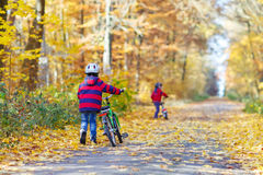 Δύο αγόρια παιδάκι με τα ποδήλατα στο δάσος φθινοπώρου Στοκ φωτογραφία με δικαίωμα ελεύθερης χρήσης