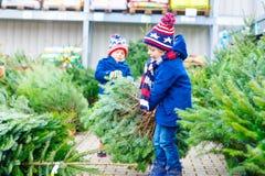 Δύο αγόρια παιδάκι που αγοράζουν το χριστουγεννιάτικο δέντρο στο υπαίθριο κατάστημα Στοκ φωτογραφίες με δικαίωμα ελεύθερης χρήσης