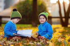 Δύο αγόρια, που διαβάζουν ένα βιβλίο σε έναν χορτοτάπητα το απόγευμα Στοκ εικόνες με δικαίωμα ελεύθερης χρήσης