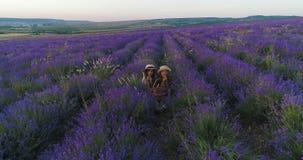 Δύο αδελφές κάθονται lavender και τρώνε τα βερίκοκα σε σε αργή κίνηση απόθεμα βίντεο