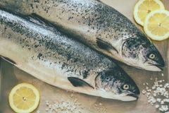 Δύο ακατέργαστα salmons Στοκ εικόνες με δικαίωμα ελεύθερης χρήσης