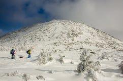 Δύο ανθρώπων πεζοπορία ο αρκτικός χειμώνας στοκ εικόνα με δικαίωμα ελεύθερης χρήσης