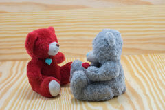 Δύο αντέχουν την κούκλα με την αγάπη κουταβιών Στοκ Εικόνες