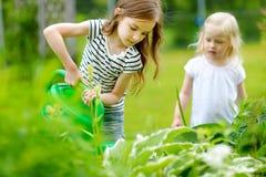 Δύο λατρευτά κορίτσια που ποτίζουν τις εγκαταστάσεις και τα λουλούδια Στοκ Εικόνες