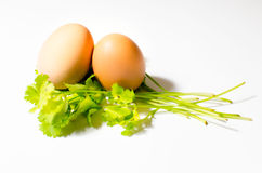 Δύο αυγά σε ένα φύλλο Parshley Στοκ Εικόνα
