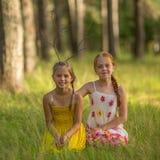 Δύο αδελφές μικρών κοριτσιών θέτουν για τη κάμερα στα ξύλα Περπάτημα στοκ εικόνες