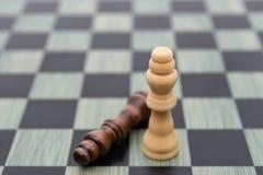 Δύο βασιλιάδες σκακιού με έναν στέκονται επάνω τον έναν καθορίζουν Στοκ Εικόνα