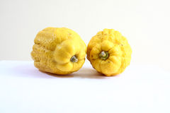 Δύο Βούδας s φρούτα 1212 χεριών Στοκ φωτογραφία με δικαίωμα ελεύθερης χρήσης